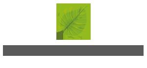 本格的ハワイアンロミロミサロンhoene|ロミロミ・アロマ ・レインドロップ|伊勢原 秦野 厚木 平塚 海老名|